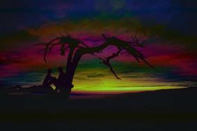 Couple Under Tree Dark Rainbow Sky