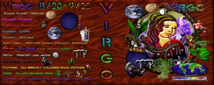 Virgo Zodiac Art Binder