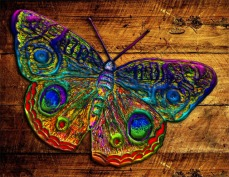 New Art Release Titled: Metallic Rainbow Country Butterfly
