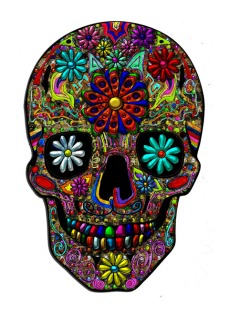 New Art Release Titled; Painted Skull with Flowers. By; Blake Henry Robson