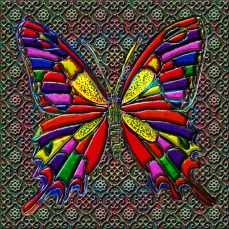 New Art Release Titled; Spotted Butterfly. By; Blake Henry Robson