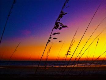 Daytona Beach Shores at Sunrise in Front of Ocean Vista