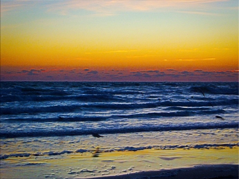 Dawns Early Light Coastal Atlantic Ocean Modern Art