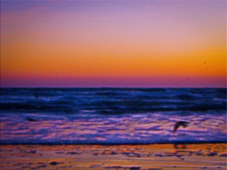 New Photo Art Titled: Abstract Morning Dawn at the Atlantic Ocean Art. Colorful edit of photograph taken early in the morning at Daytona Beach on the Atlantic Ocean, of the surf, sky and a couple of large seabirds.