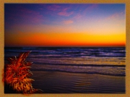 New Art Titled: Tropical Dawn on Beach Facing out to Sea Art. Digital art edit from photograph taken facing out over the Atlantic Ocean from Daytona Beach early on a winter morning in Daytona Beach.