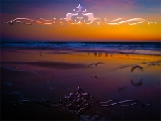 New Art Titled: Seagulls Frolicking & Flying During Dawn on Beach. Computer edit of photograph taken on Daytona Beach, early in the morning facing northeast over the Atlantic Ocean of a beautiful new day and seagulls and other seabirds, flying, frolicki