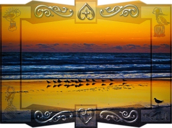 New Art Titled: Seaside Birds Soaking in Orange Light at Waters Edge. Photo edit of 16 birds baking in the new light and colors of the day on the edge of the Atlantic Ocean as the colors orange and golden yellow from the sky reflect on the shore