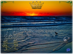 New Art Titled: Royal Tequila Sunrise Over Atlantic & Daytona Beach. Managed to get this seagull in standing in the water and the sun braking through the clouds at the horizon over the Atlantic Ocean, on a beautiful morning for the waves too, as there a