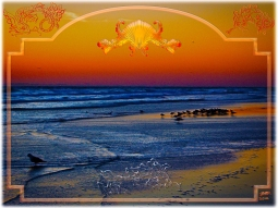 New Art Titled: Birds on the Beach at Dawn Fancy Fish & Shell Design. Digital art and photo edit of photograph taken early in the morning facing southwest along the Atlantic coastline with a large group of birds in the orange reflection from the sky on