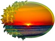 New Art Titled: Sunrise Over Atlantic Oval with Flowers. Sunrise on Daytona Beach overlooking the Atlantic Ocean as the sun brakes through the horizon line, photograph edit.