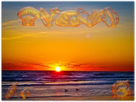 new Art Titled: Sunrise on a Beautiful Winters Day in Daytona Beach. Sunrise Art, Tropical Ocean Sunrise Art, sunrise photography and art, Tropical sunrise Art, Ocean Sunrise Art, Shell Art, Daytona Beach Florida Art, sunrise, tropical, tropical seascap