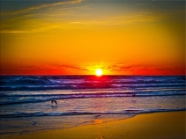 new Art Titled: Sunrise Over Atlantic Ocean & Water Reflection. Beautiful photography digital edit as the sun rises above the coastline of the Atlantic Ocean seascape artwork, with golden reflection in waterline at the edge of ocean on beach and birds f