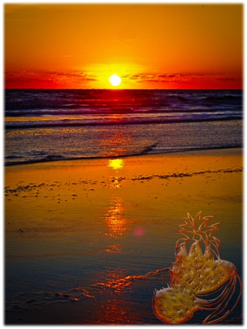 New Art Titled: Ocean Sunrise Reflected on Beach Tropical Fruit Art. Unique sunrise image with the sun completely over the Atlantic coastal horizon and reflecting over the ocean, waves and beach, in a rainbow of vibrate colors.