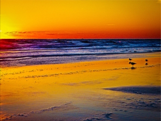 New Art Titled: Reflection of Sunrise on Atlantic Ocean & Beach. Original photo edit taken at sunrise with the sun itself to just out of the art to the left however it's effects are pervasive throughout even the oranges, yellows and a touch of blue are